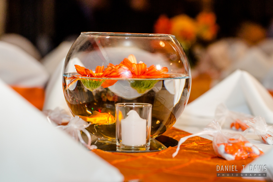 GoldFish Wedding
